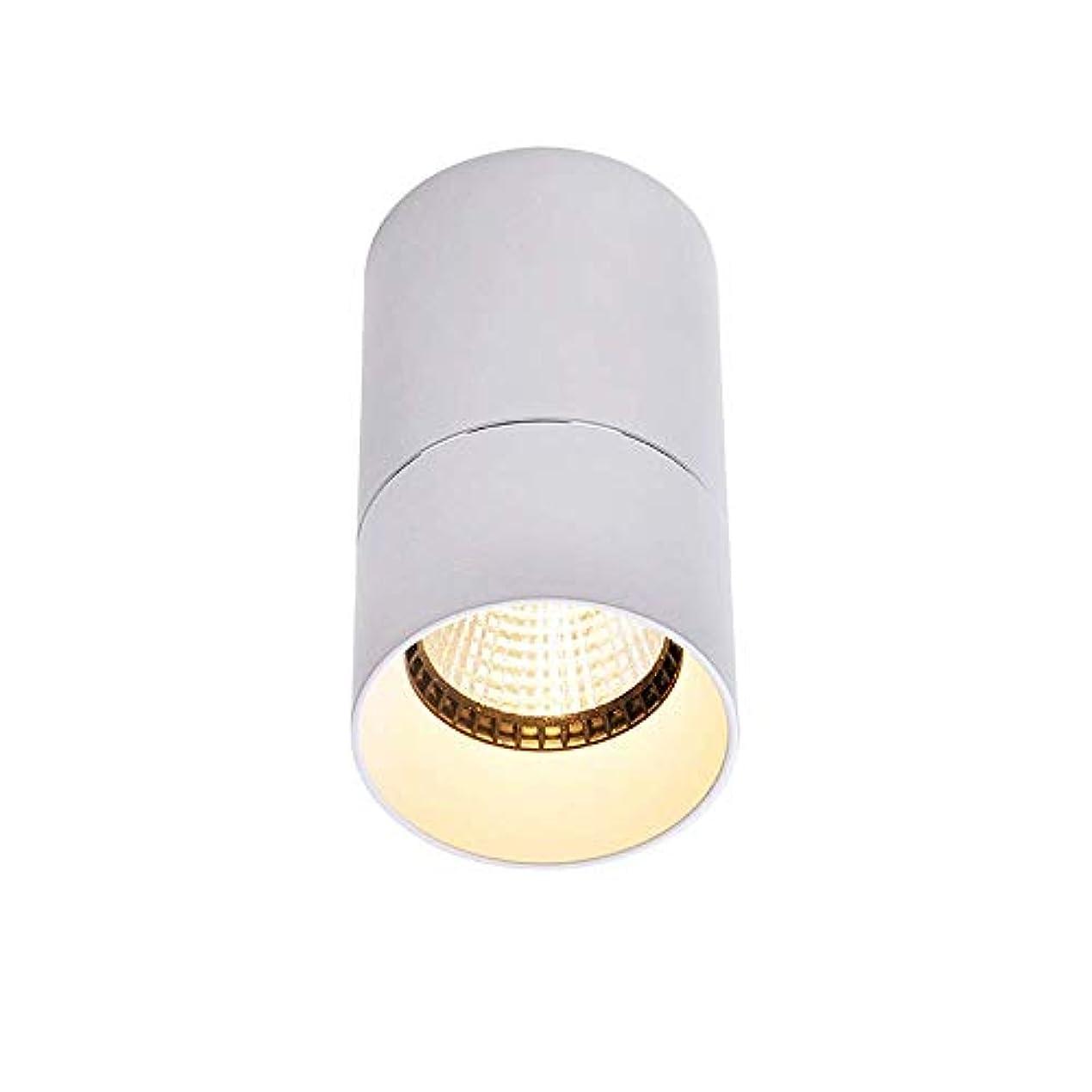 傑出した学習悲観主義者8W Ledマウントスポットライトダウンライト装飾照明屋内ハイライトLed天井パネルライト照明COBダウンライト