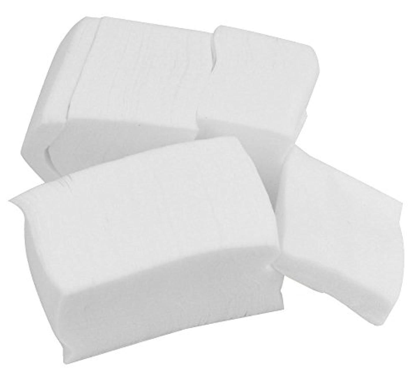 投げ捨てるおじいちゃん火薬CJESLNA Lint Free Nail Art Wipes Polish Acrylic Remover [並行輸入品]
