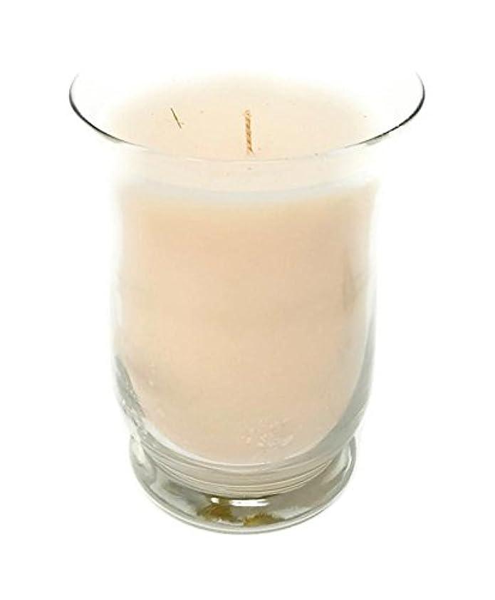 輝くブラインドバンカースリムハリケーン香りつきJar Candle by Partylite G05106