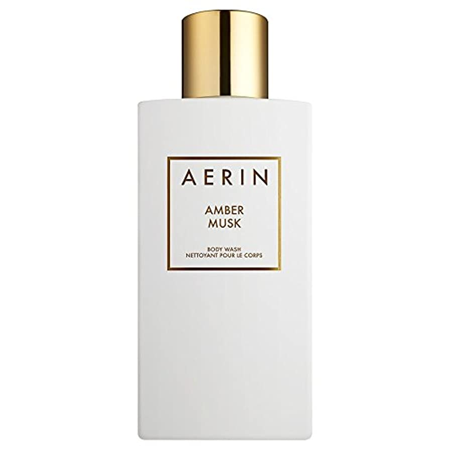 不変飛行機パキスタン人Aerinアンバームスクボディウォッシュ225ミリリットル (AERIN) (x2) - AERIN Amber Musk Bodywash 225ml (Pack of 2) [並行輸入品]