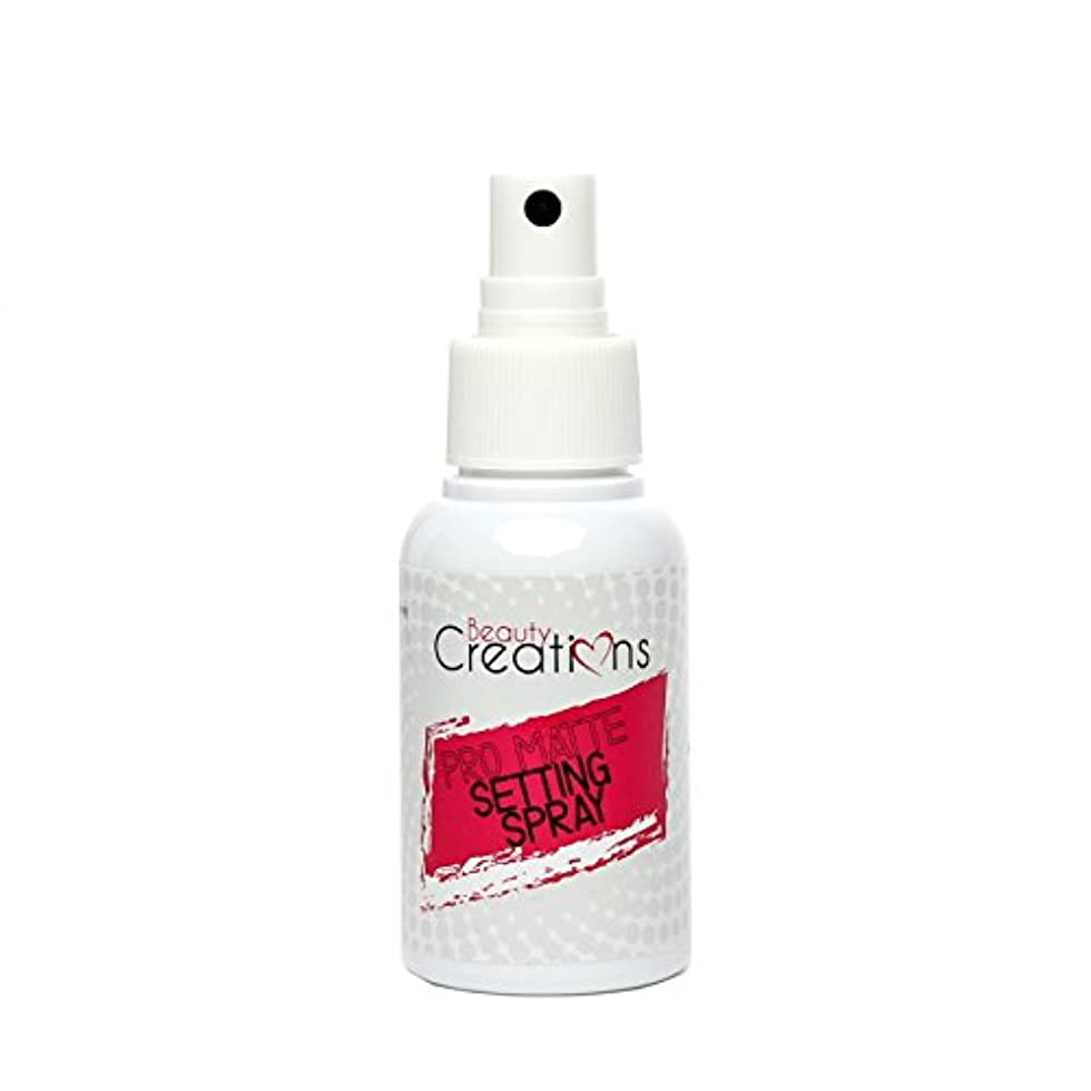 造船精度翻訳BEAUTY CREATIONS Pro Matte Setting Spray (並行輸入品)