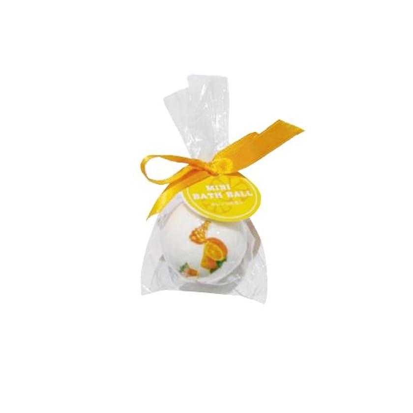 報奨金相対的潜在的なミニバスボール オレンジ 12個セット