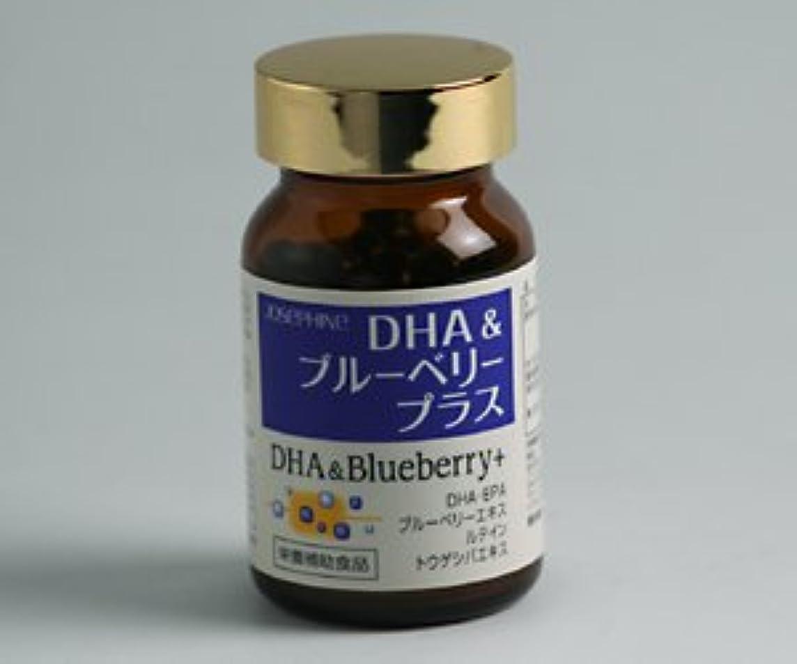 証明遷移達成可能DHA&ブルーベリー プラス 90粒