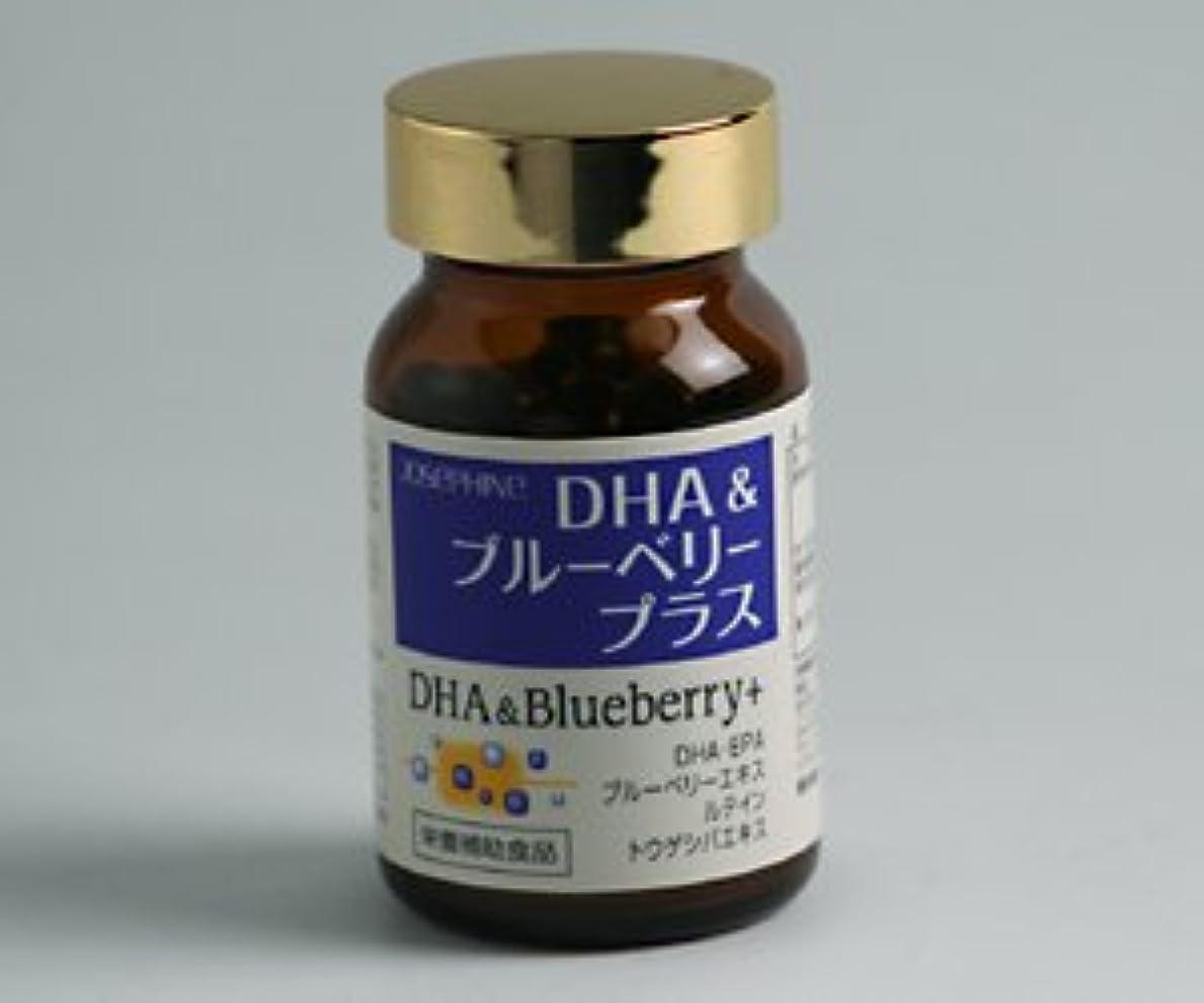 複雑でない無意味持続的DHA&ブルーベリー プラス 90粒