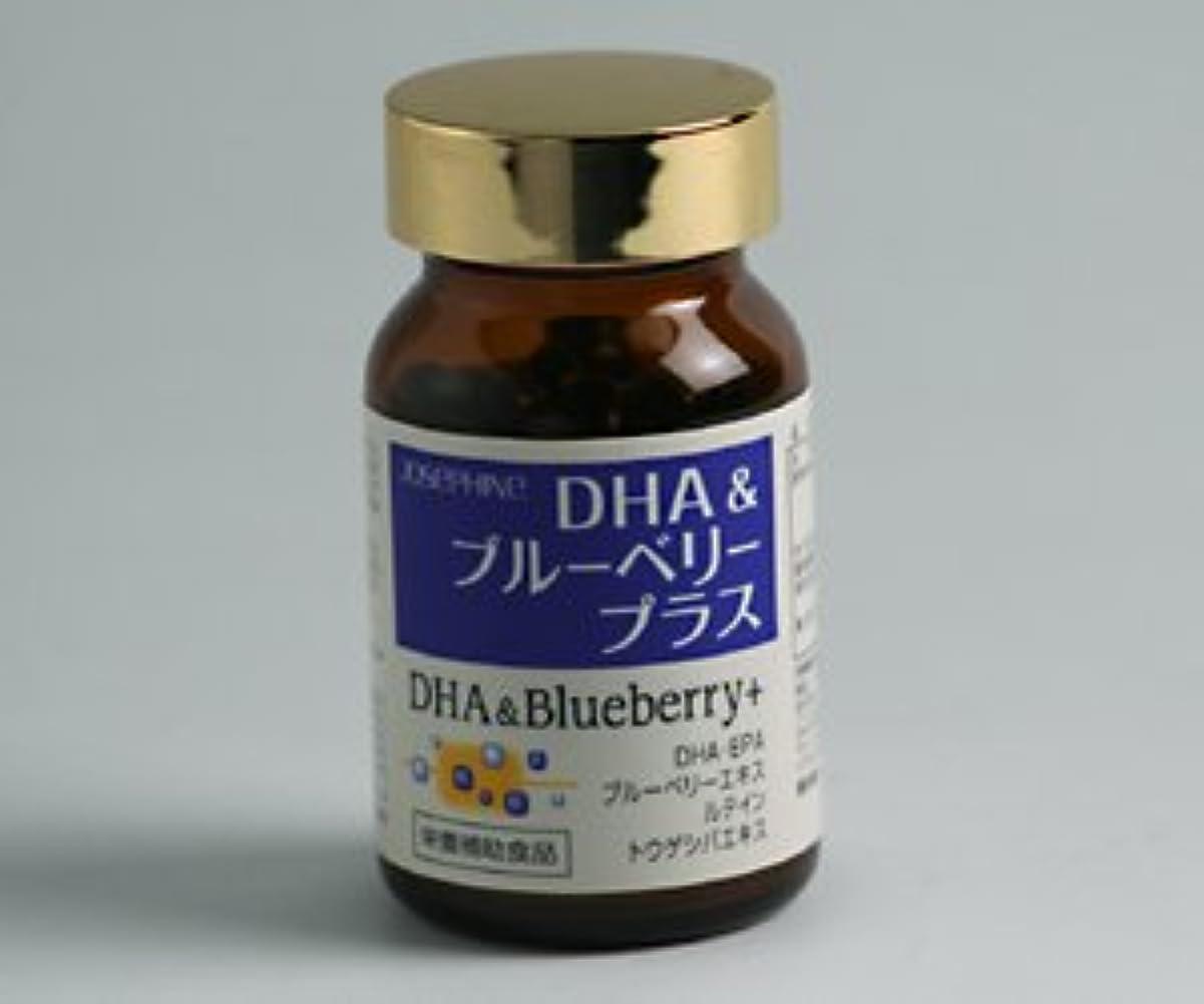 満足させる小麦粉統計DHA&ブルーベリー プラス 90粒