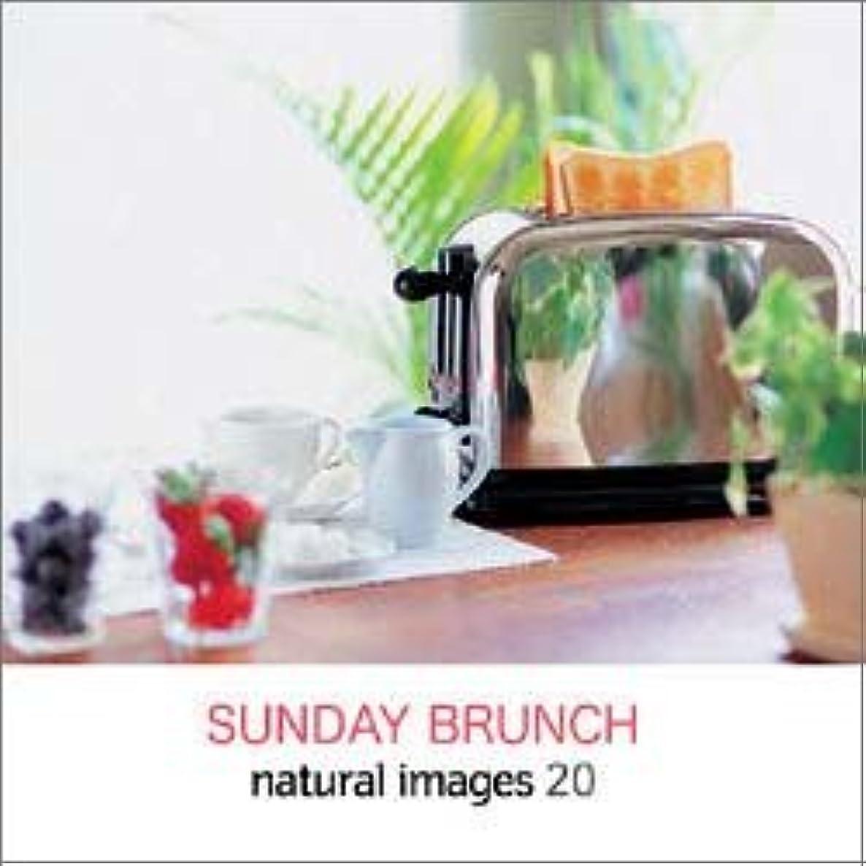 以上先のことを考える摂動natural images Vol.20 SUNDAY BRUNCH