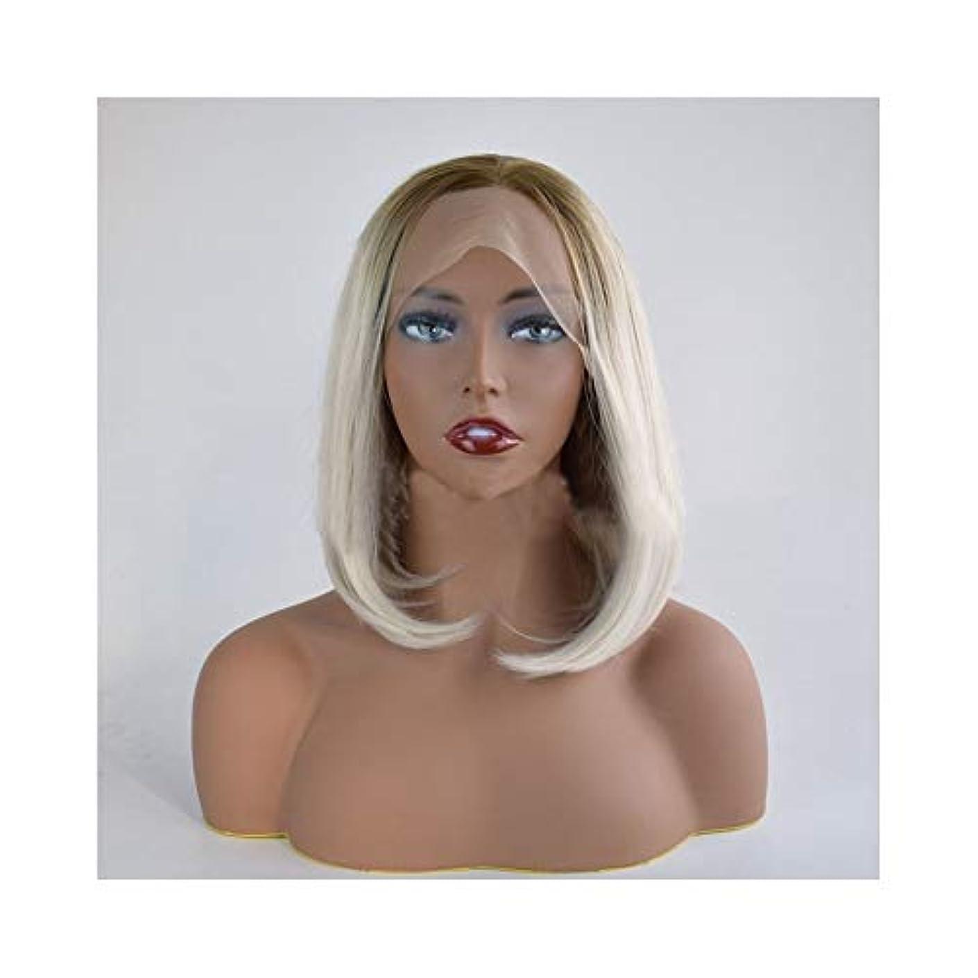 お肉部屋を掃除する書店YOUQIU BOB女子ショートストレートヘアーの合成レースフロントウィッグ、ライトグレーウィッグ (色 : Light gray, サイズ : 12 inch)