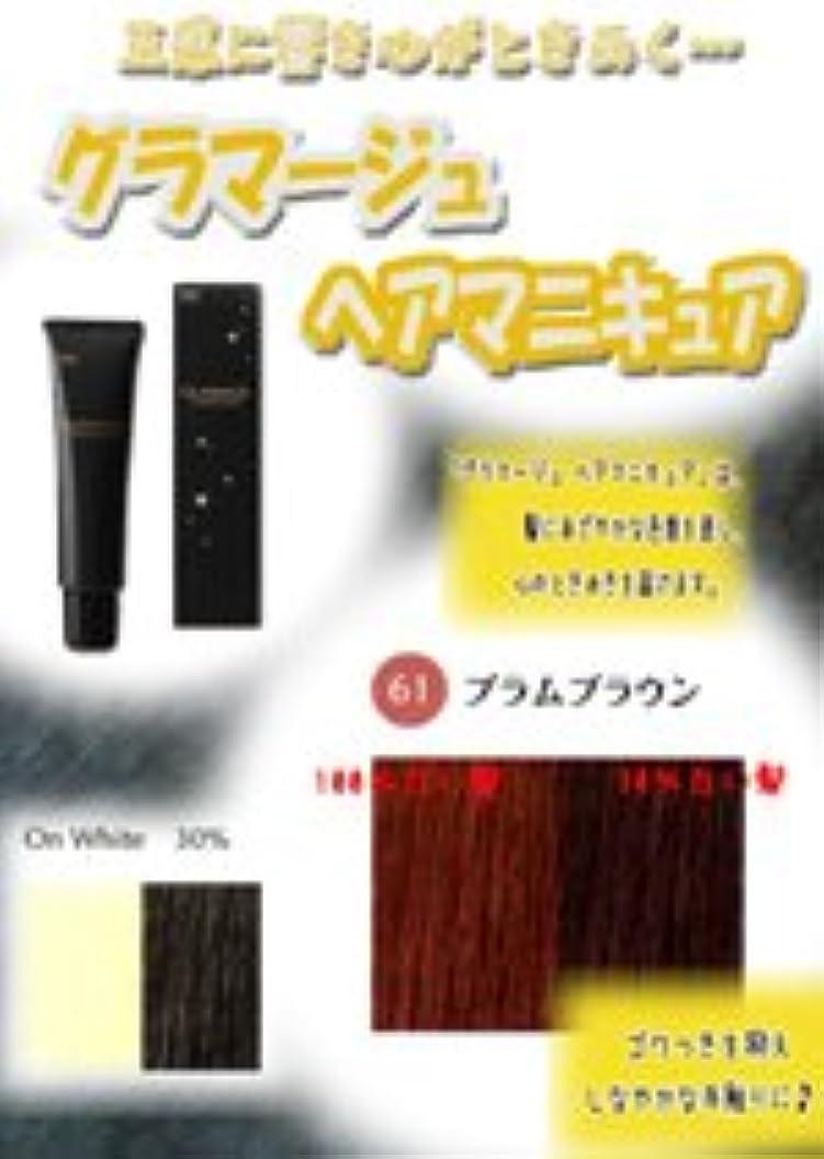 形鍔システムHOYU ホーユー グラマージュ ヘアマニキュア 61プラムブラウン 150g 【ブラウン系】