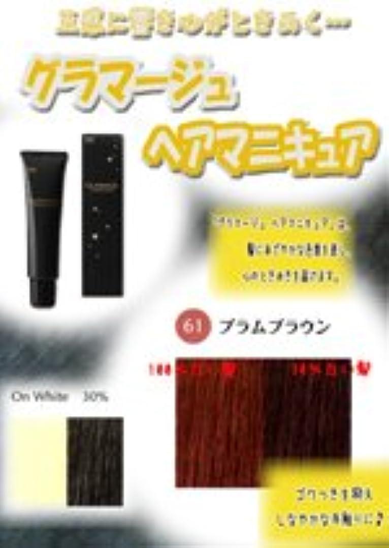 宝知恵暖炉HOYU ホーユー グラマージュ ヘアマニキュア 61プラムブラウン 150g 【ブラウン系】