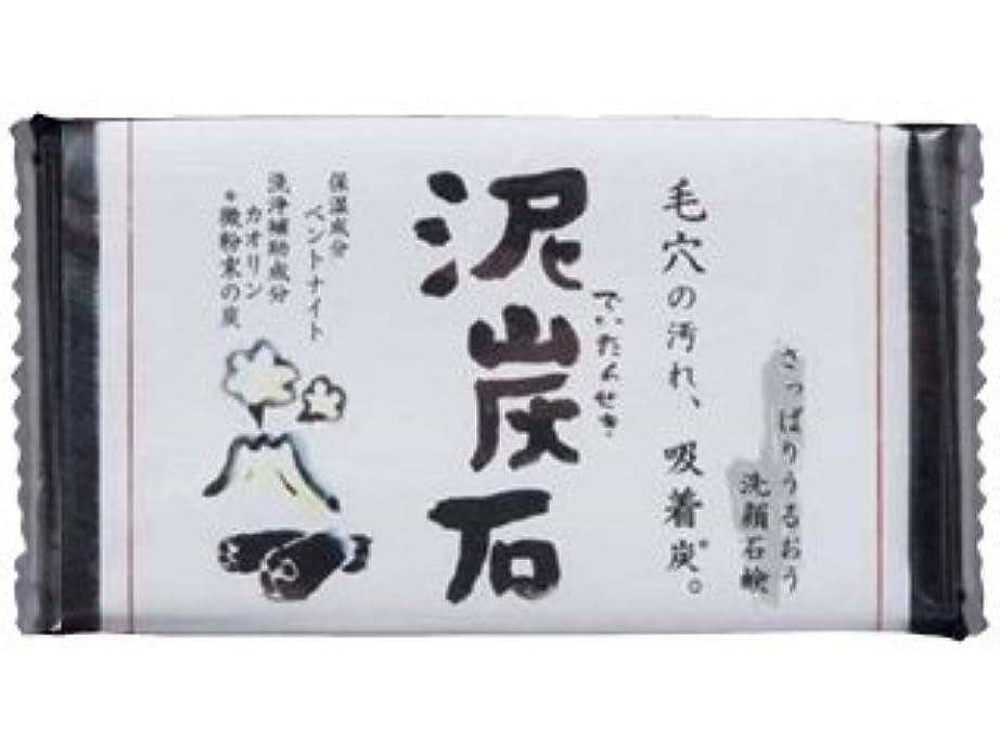 仮装労働リアル泥炭石石けん 110g (使いやすい手のひらサイズ)