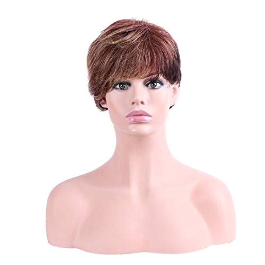 灰刑務所スカートYOUQIU 女性の耐熱ウィッグナチュラルヘアウィッグ用オンブル茶ショート傾斜部髪の天然、合成ウィッグ (色 : Ombre Brown)