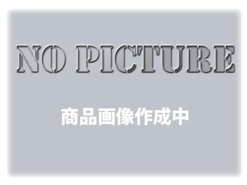 Powerbronze: ヘッドライト プロテクター for SUZUKI B-KING 07-11 ダーク ティント