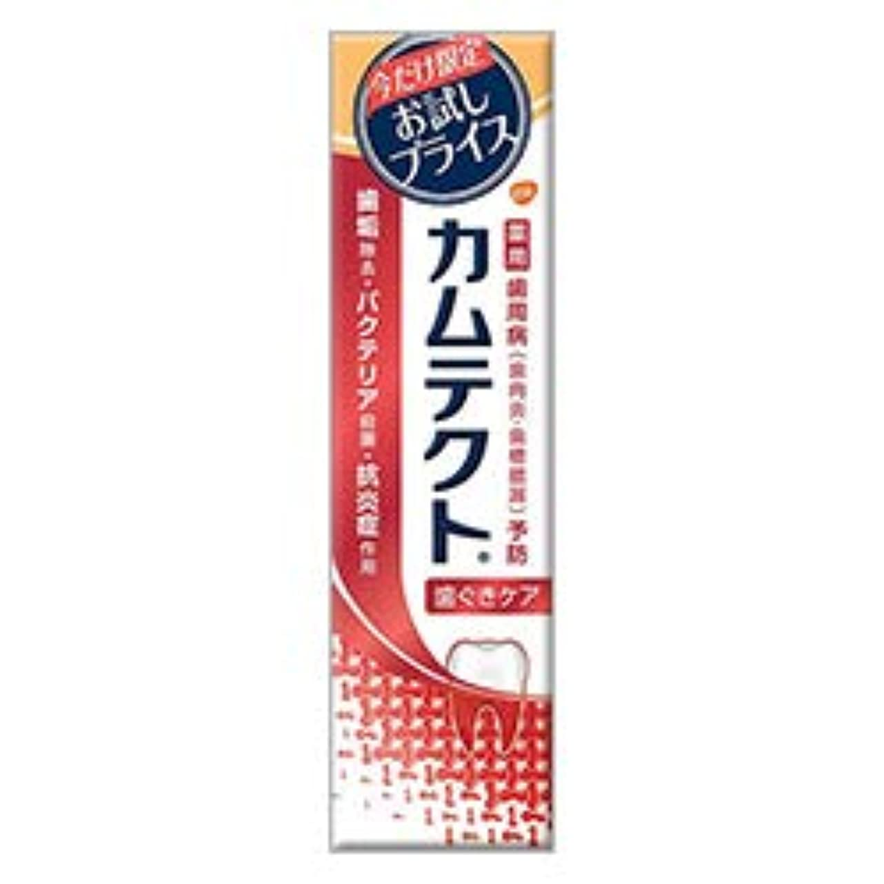 観客第三リス【アース製薬】カムテクト 歯ぐきケア 限定お試し版 105g [医薬部外品] ×3個セット