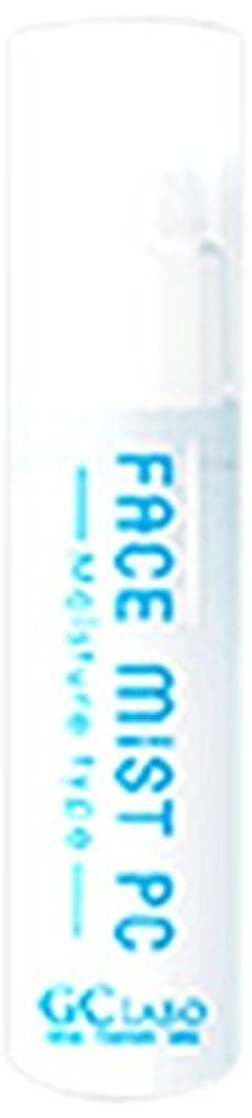 未使用正しい魅惑的なフェイスミストPC モイスチャータイプ