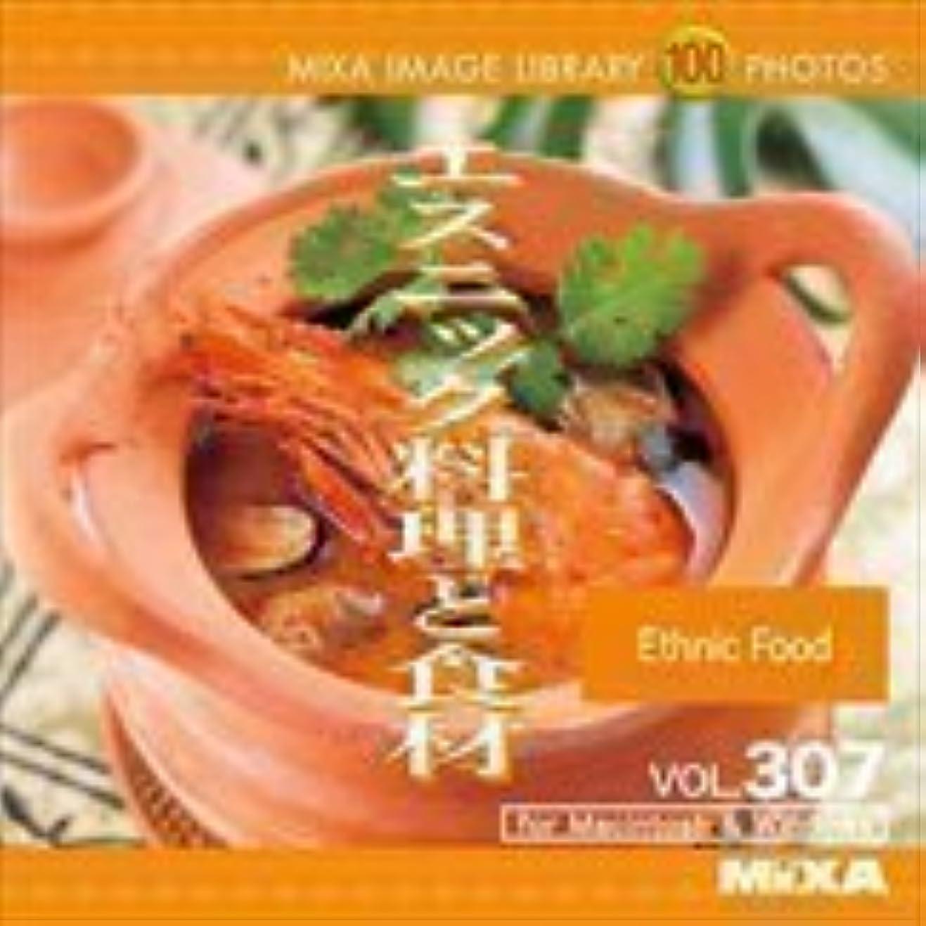 資本つまずく影響するMIXA IMAGE LIBRARY Vol.307 エスニック料理と食材