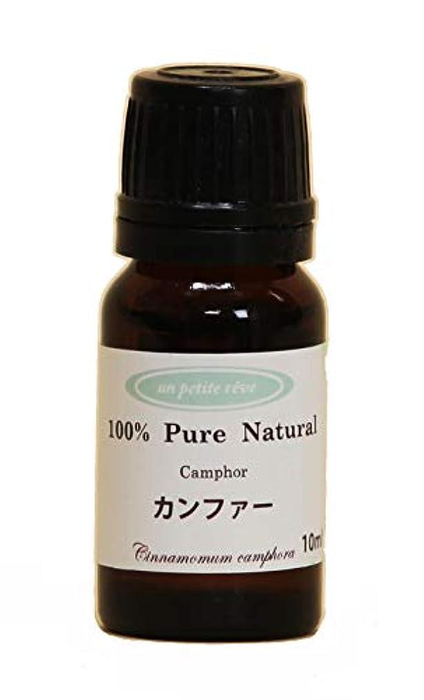 隠されたお勧め軽減カンファー  10ml 100%天然アロマエッセンシャルオイル(精油)