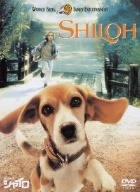 ビーグル犬 シャイロ 特別版 [DVD]