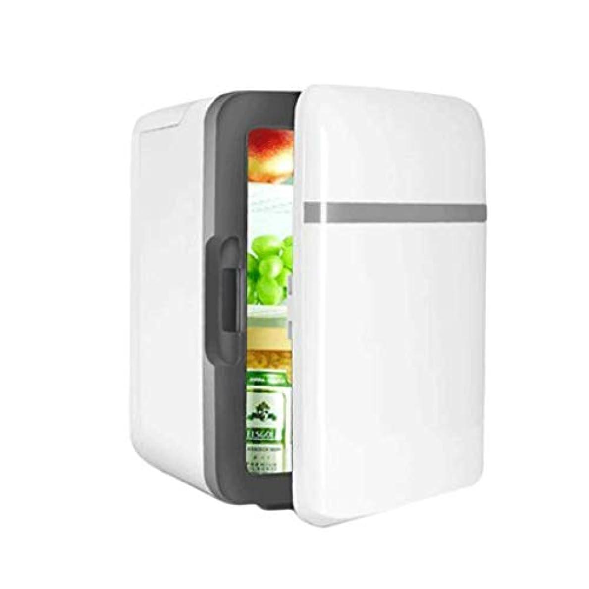 呼吸する弱い見て10L車の冷蔵庫車および家の二重使用携帯用冷凍の冷凍の暖房