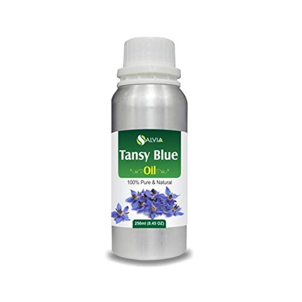 Tansy Blue Oil (Tanacetum annuum) 100% Natural Pure Undiluted Uncut Essential Oil 250ml