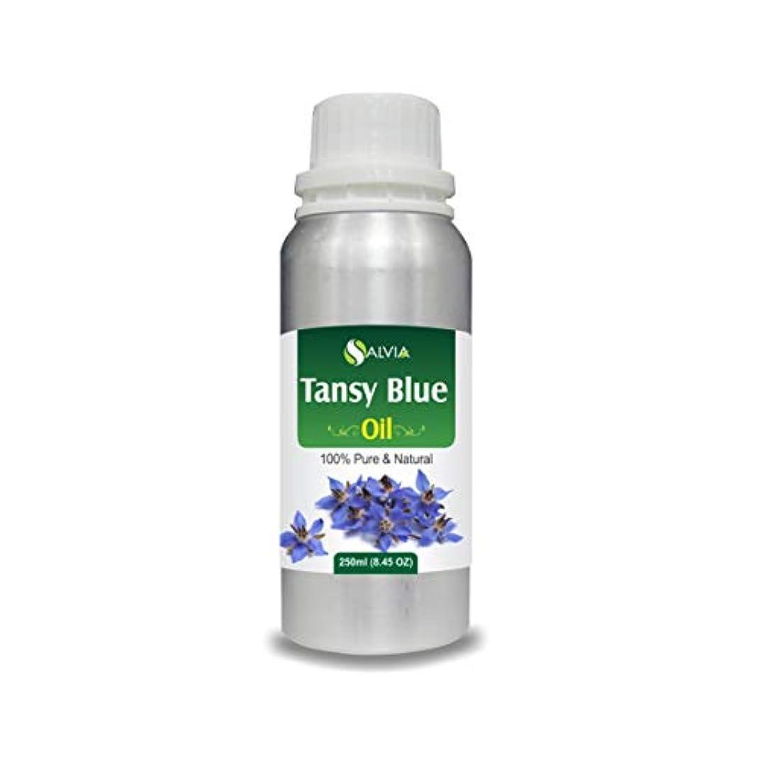 サイバースペースリベラル咽頭Tansy Blue Oil (Tanacetum annuum) 100% Natural Pure Undiluted Uncut Essential Oil 250ml