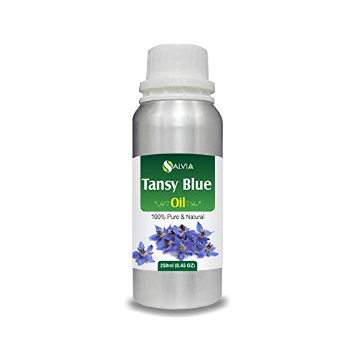 気怠い地球ファランクスTansy Blue Oil (Tanacetum annuum) 100% Natural Pure Undiluted Uncut Essential Oil 250ml