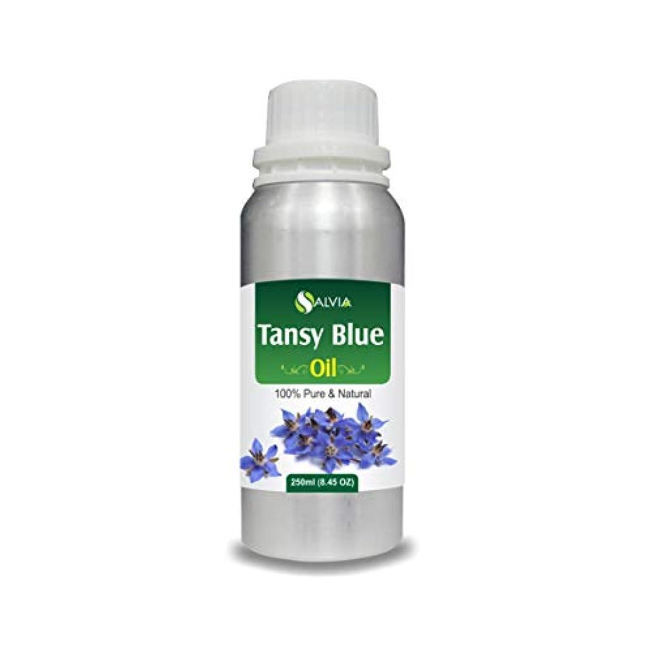 興奮する章予見するTansy Blue Oil (Tanacetum annuum) 100% Natural Pure Undiluted Uncut Essential Oil 250ml