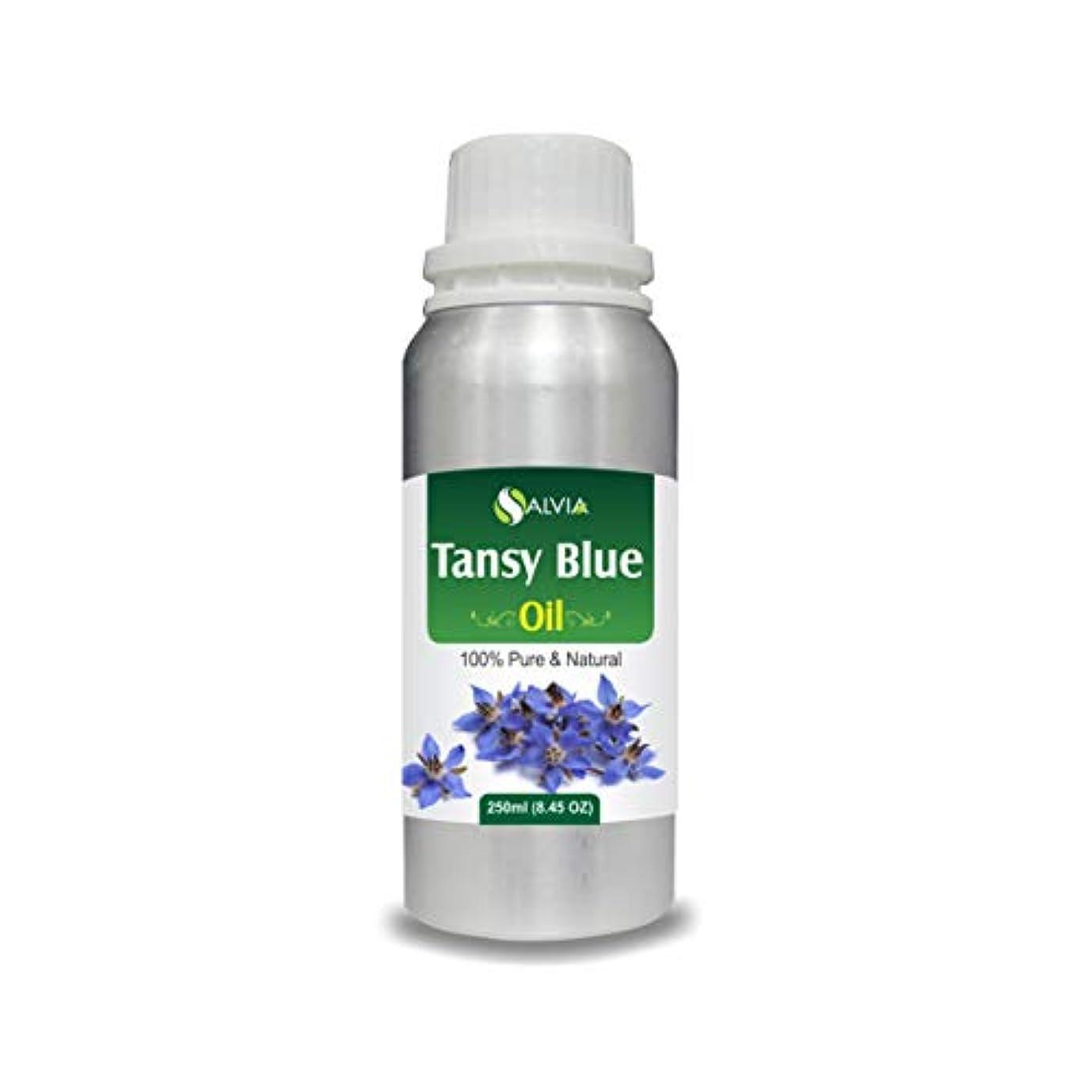 風刺発行敬Tansy Blue Oil (Tanacetum annuum) 100% Natural Pure Undiluted Uncut Essential Oil 250ml