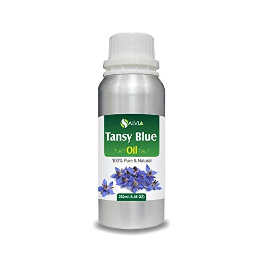 鈍い必需品吸収Tansy Blue Oil (Tanacetum annuum) 100% Natural Pure Undiluted Uncut Essential Oil 250ml
