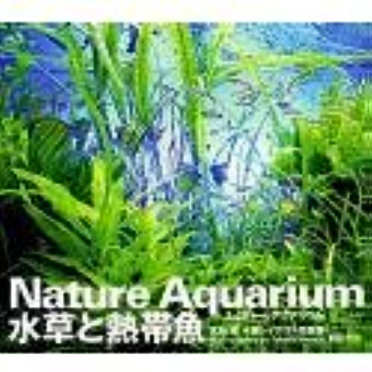 しなやか実験室日焼けNature Aquarium 水草と熱帯魚