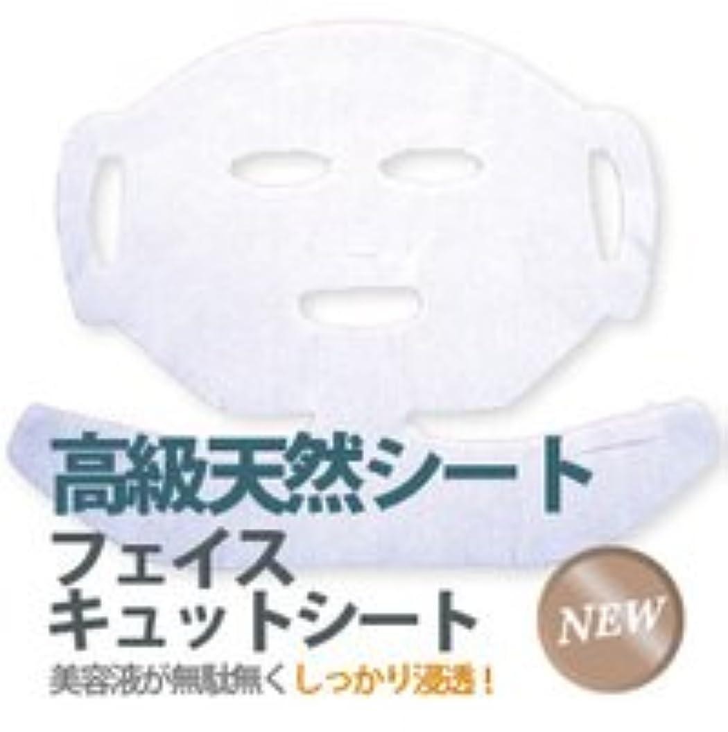 カトリック教徒スモッグ独特のフェイスキュットシート 【100枚入】
