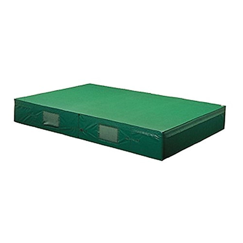 トーエイライト(TOEI LIGHT) 屋内外兼用エバーマット(防水ビニロン帆布)?二つ折り150/200/20cm(F)用交換袋 G-2060A