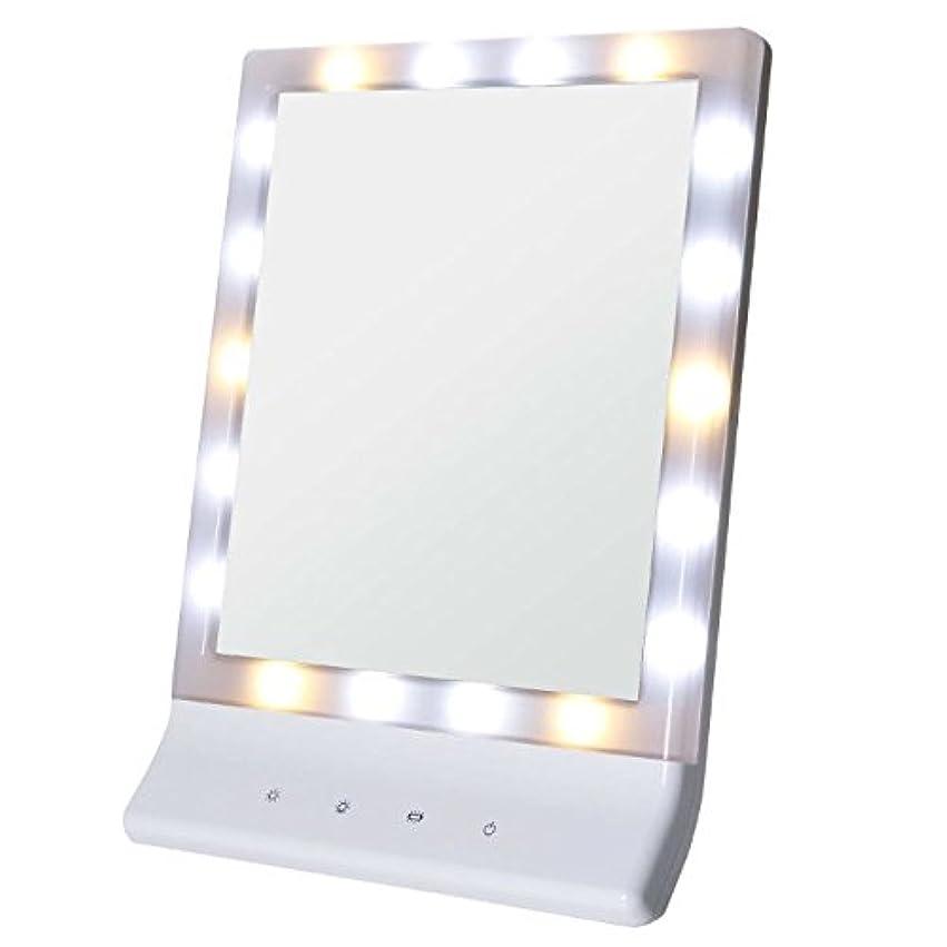 力ダイバー船外Smaly LED化粧鏡 女優ミラー/お姫様ミラー 電池&USB 2way給電