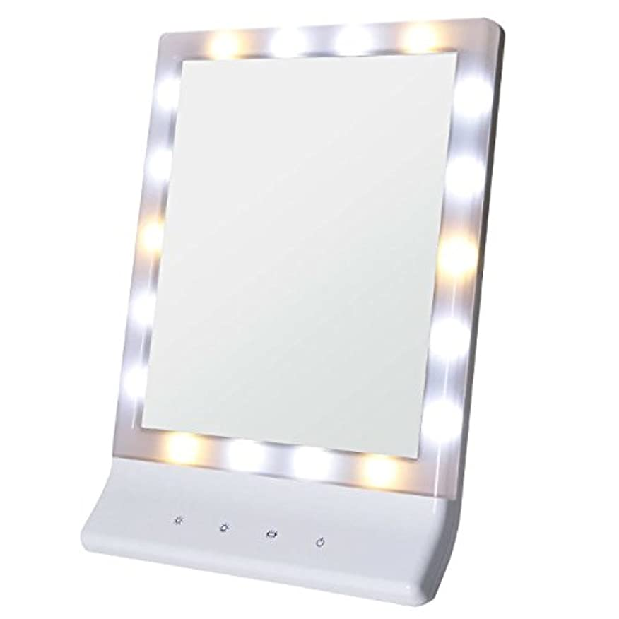 Smaly LED化粧鏡 女優ミラー/お姫様ミラー 電池&USB 2way給電