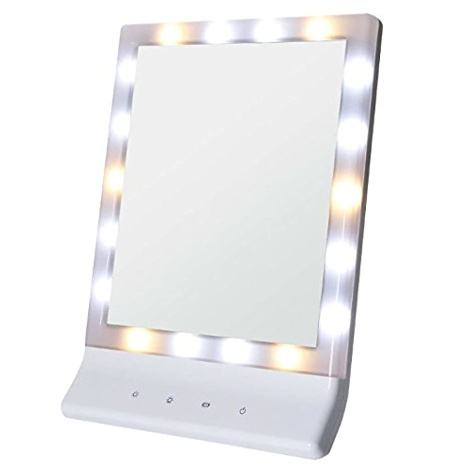 有効化気怠い乗り出すSmaly LED化粧鏡 女優ミラー/お姫様ミラー 電池&USB 2way給電