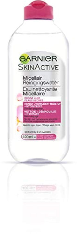 チャート歪める松ガルニエ SkinActive Micellar Water - For Dry Skin 400ml/13.3oz並行輸入品