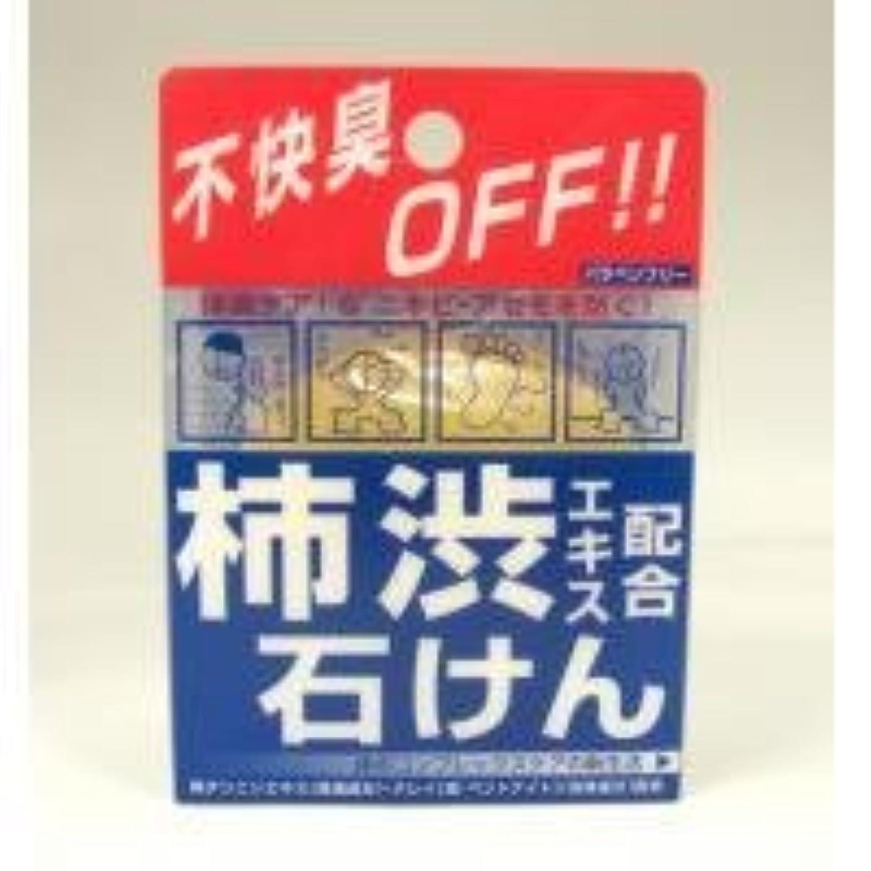 伝統一部考古学柿渋エキス配合石けん 100g