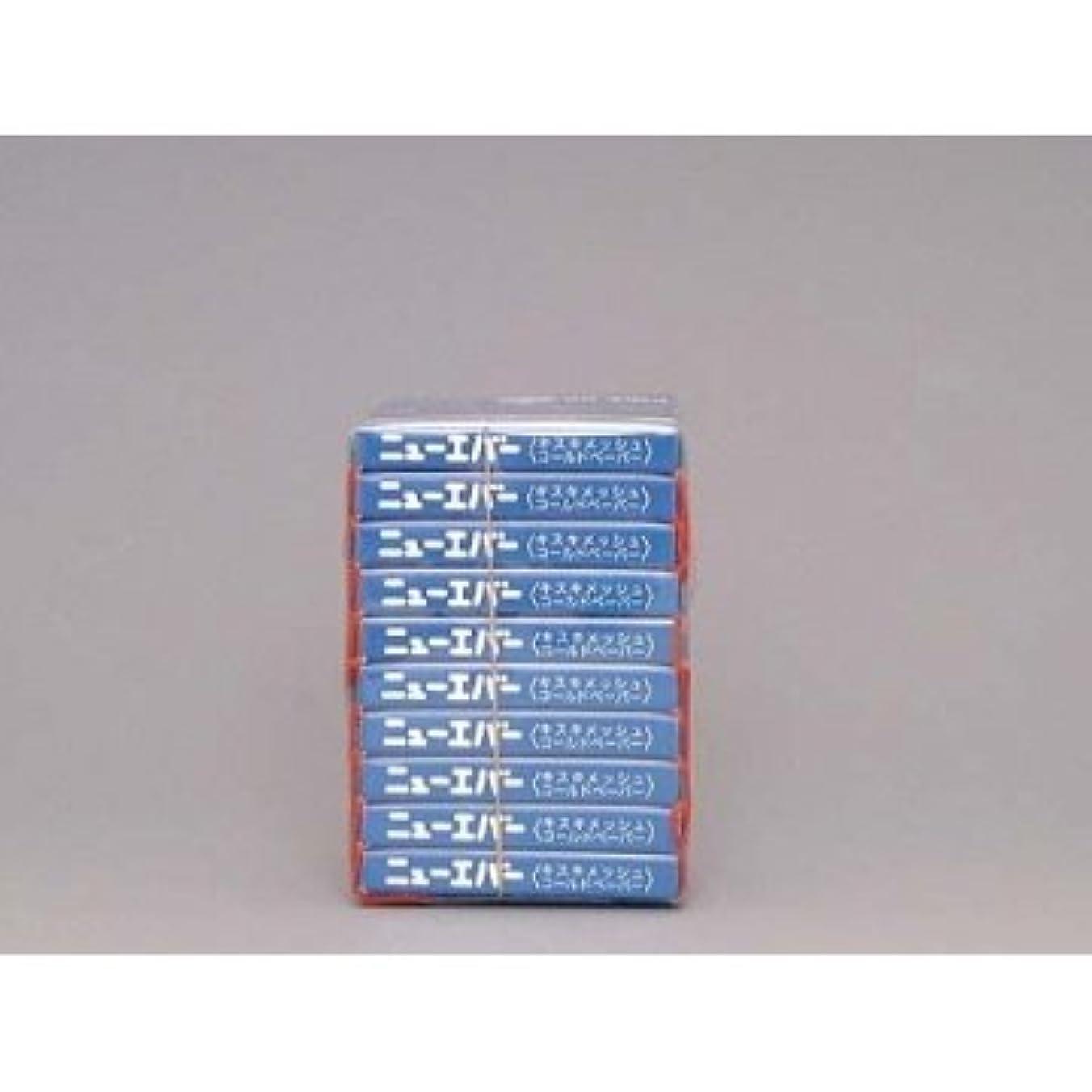 国落ちた抵抗力がある米正 ニューエバー ピックアップ ハンディタイプL キスキメッシュコールドペーパー 100枚×10ケ入 ブルー