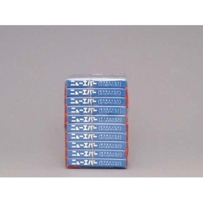 生きる開いたマーキング米正 ニューエバー ピックアップ ハンディタイプL キスキメッシュコールドペーパー 100枚×10ケ入 ブルー