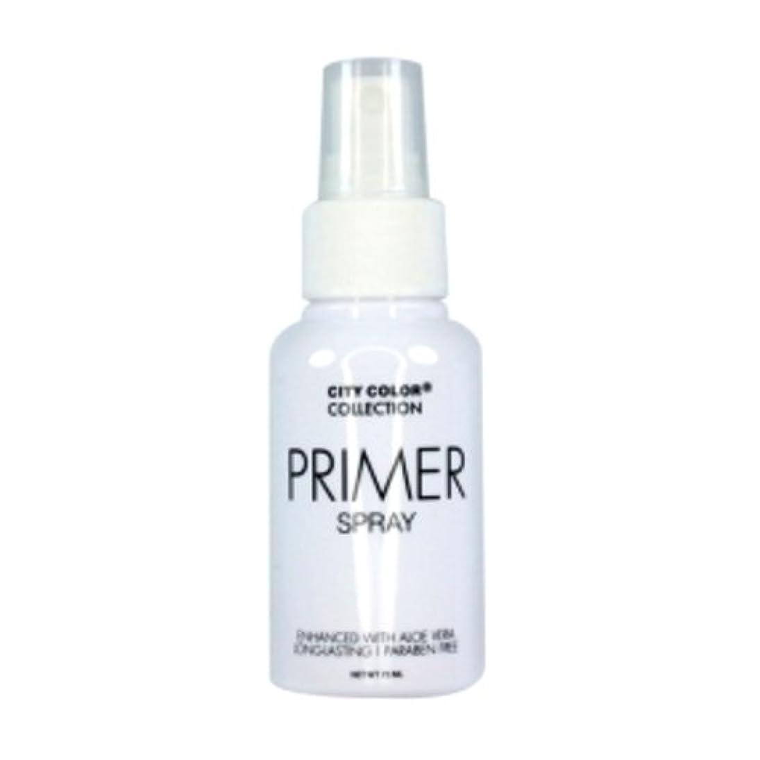 クリスチャン老朽化したドル(6 Pack) CITY COLOR Primer Setting Spray (並行輸入品)