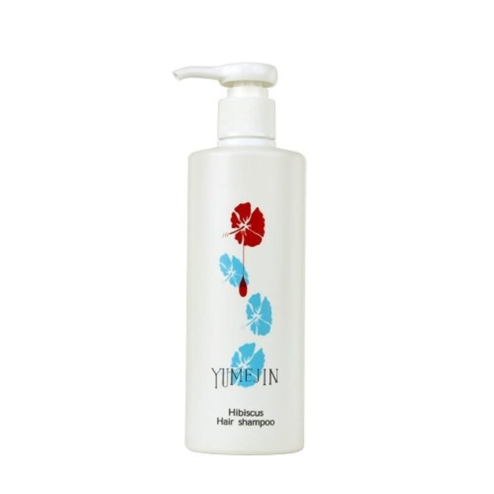 貴重な結晶サワーハイビスカス ヘアシャンプー 【ノンシリコン アミノ酸シャンプー】