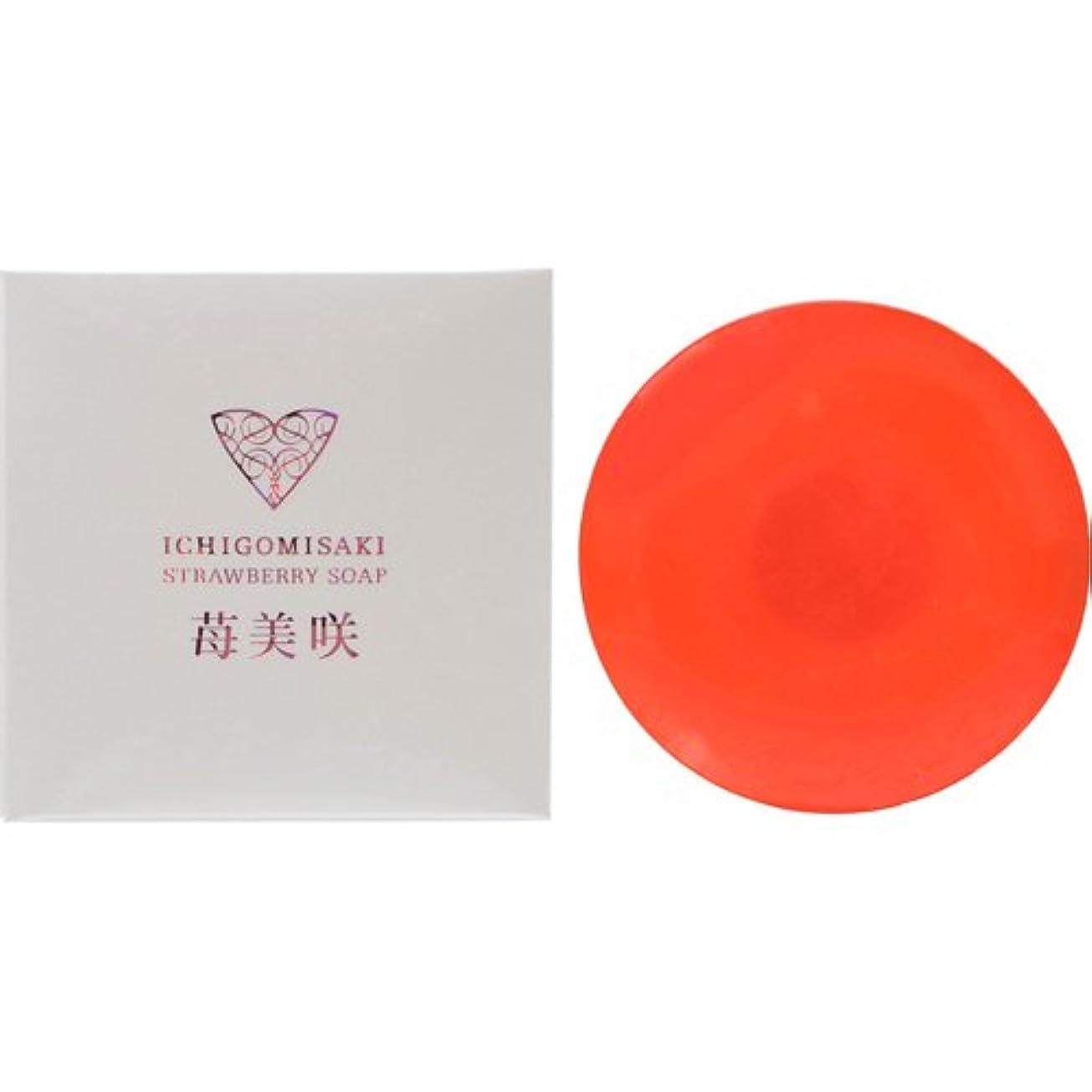 中で資格スカーフアクト化成 苺美咲 洗顔石鹸 100g