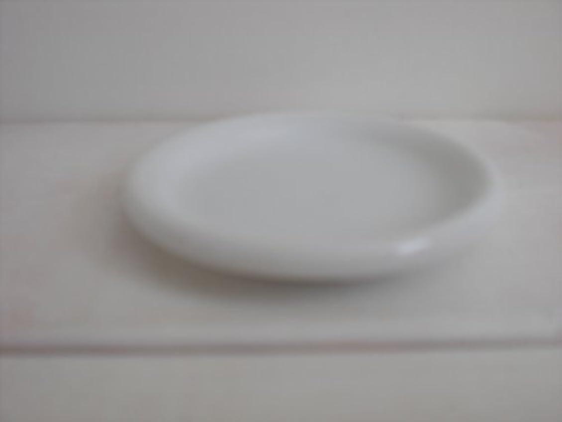 一握り消毒するキャンベラナチュラルライト 専用オイル皿 NL-SA