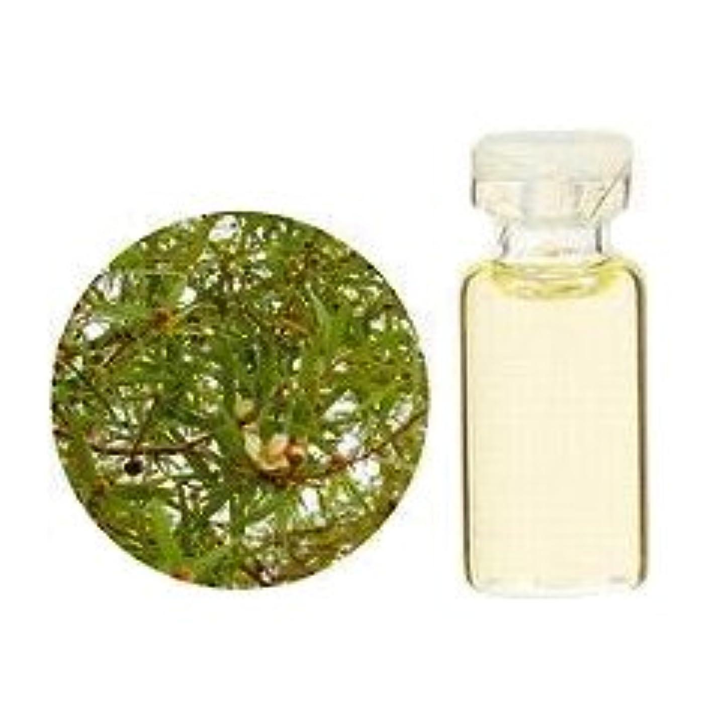 生活の木 エッセンシャルオイル 精油 レモンティートゥリー 50ml
