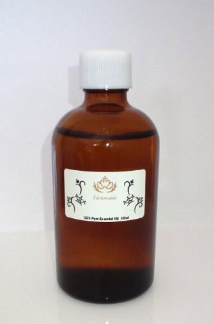 温かいささいな征服者i&aroma オリジナルブレンドオイル 【フレッシュスウィート】 (100ml)