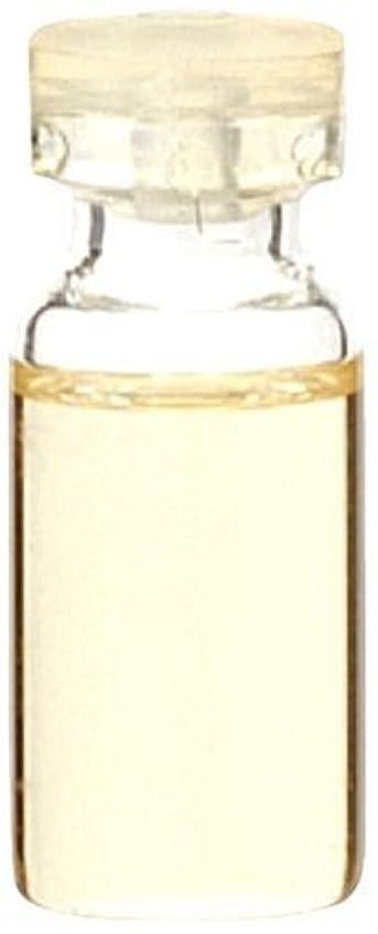 見捨てられたクラシック貞生活の木 和精油 ヒノキ 50ml