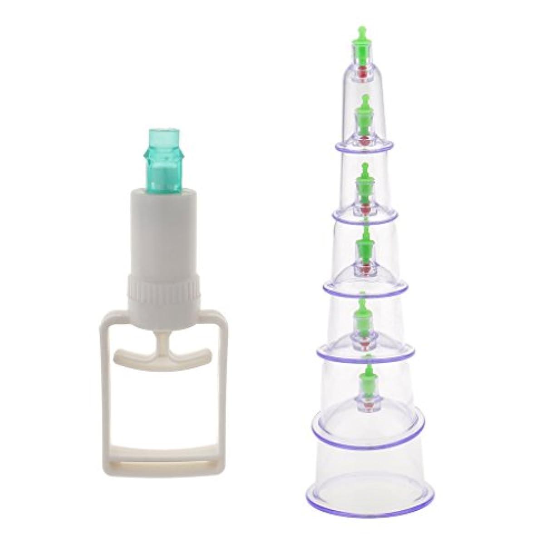 ファランクス放つ直径SONONIA 6個入り 真空ポンプ 吸引 カッピング マッサージ 血液循環 組織再生  セラピーセット 漢方