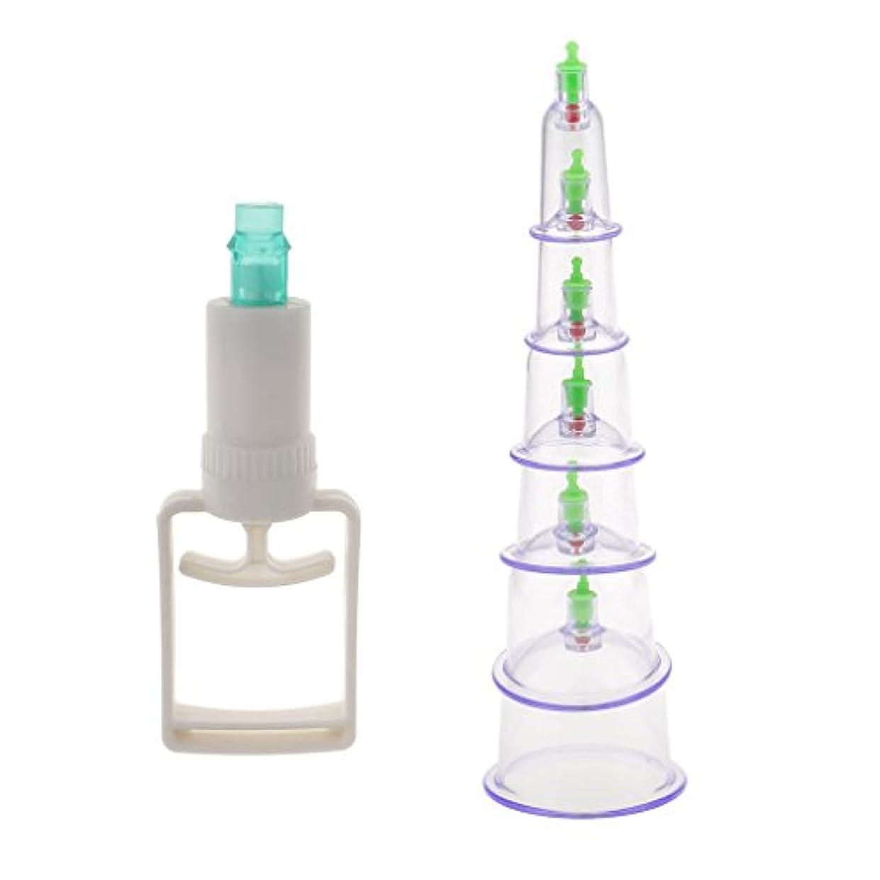 南粘液暴露6個入り 真空ポンプ 吸引 カッピング マッサージ 血液循環 組織再生 セラピーセット 漢方