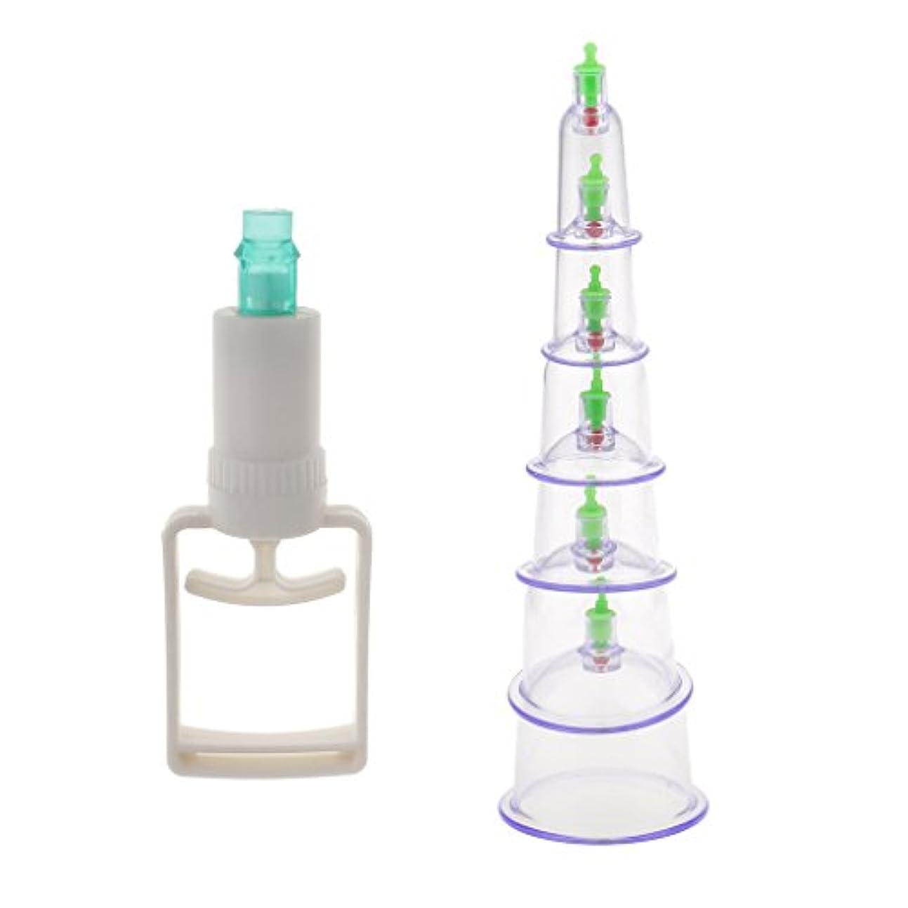 前投薬一過性ステレオタイプ6個入り 真空ポンプ 吸引 カッピング マッサージ 血液循環 組織再生 セラピーセット 漢方