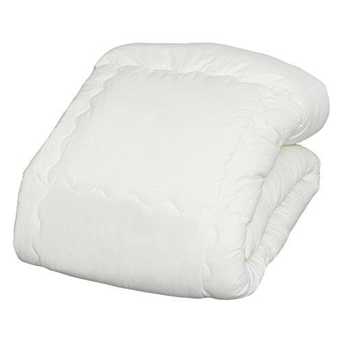 アイリスオーヤマ 掛け布団 洗える ほこりが出にくい ポリエステル シングル FPK-S -