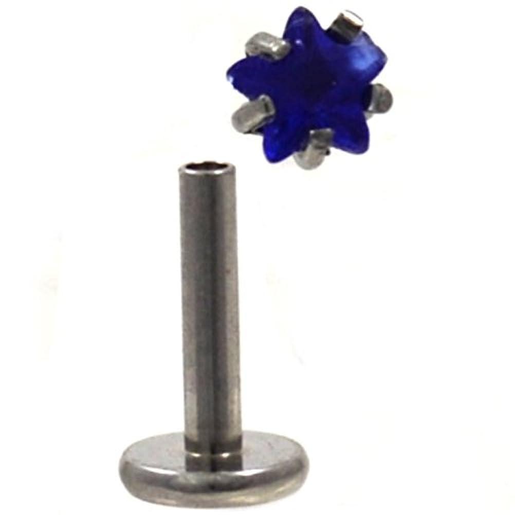 通り抜けるセッション不快な星型ブルーCZ Gem Top鋼ラブレットモンローピアススタッド16ゲージ
